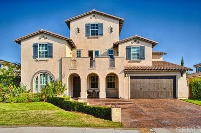 Temecula Single Family Home For Sale: 32285 Fireside Drive