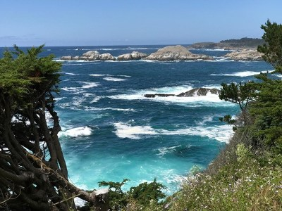 Monterey County, San Luis Obispo County Residential Lots & Land For Sale: 244 Highway 1 #3