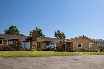 Salinas Single Family Home For Sale: 428 River Road