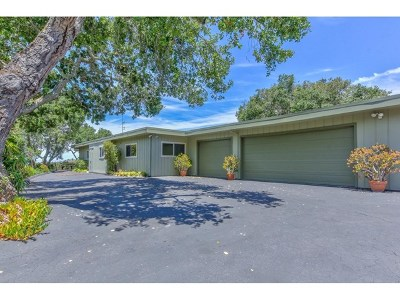 Salinas Single Family Home For Sale: 246 San Benancio Road