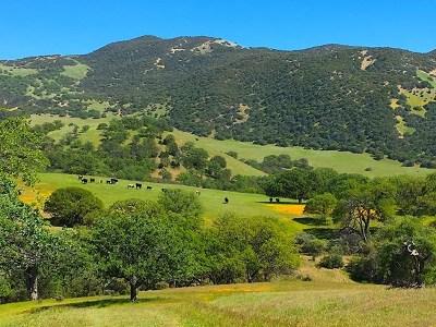 San Luis Obispo County, Monterey County, Santa Barbara County Residential Lots & Land For Sale: Carmel Valley Road