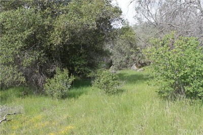 Mariposa County Residential Lots & Land For Sale: 1 Ashworth Road