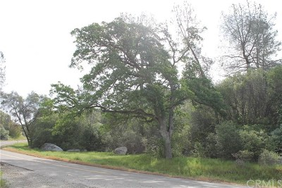 Mariposa County Residential Lots & Land For Sale: 2 Ashworth Road