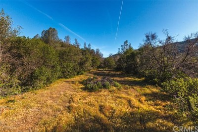 Mariposa County Residential Lots & Land For Sale: 4796 State Highway 49 S
