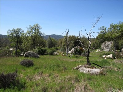 Mariposa Residential Lots & Land For Sale: 4658 Little Bear Road