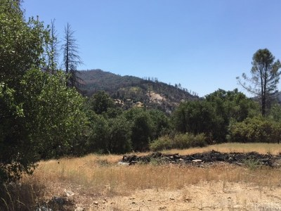 Mariposa Residential Lots & Land For Sale: 2317 Coachman Road