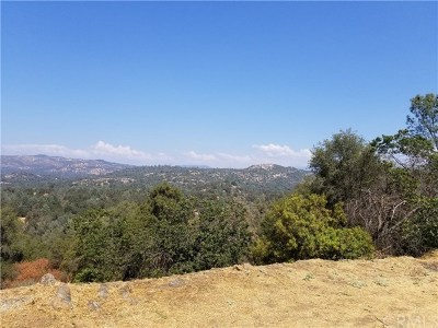 Mariposa County Single Family Home For Sale: 4739 Lookout Mountain Road