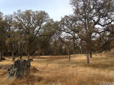 Mariposa Residential Lots & Land For Sale: 4390 Burl Drive