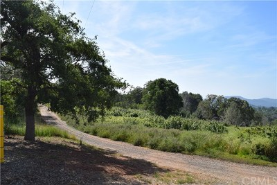 Mariposa Commercial For Sale: Hwy. 140