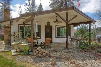 Mariposa Single Family Home For Sale: 5646 Pilot Peak Road