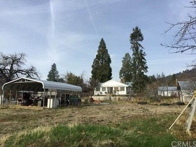 Mariposa Single Family Home For Sale: 6155 Smither Road