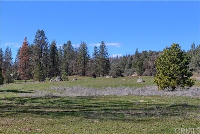 Mariposa Residential Lots & Land For Sale: 2795 Hhighway 49 S