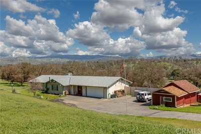 Mariposa Single Family Home For Sale: 4020 Old Highway