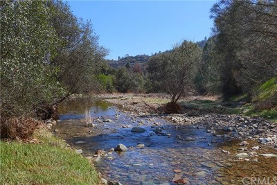 Mariposa County Residential Lots & Land For Sale: 5349 Highway 49 Road