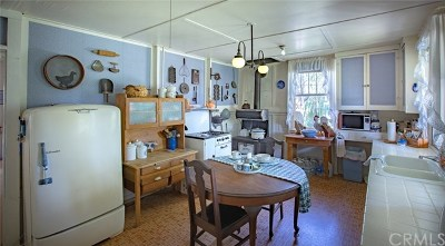Mariposa Single Family Home For Sale: 6155 Chowchilla Mountain Rd.