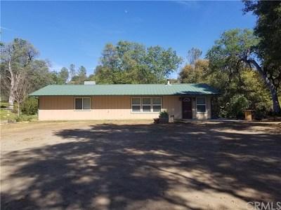 Mariposa Single Family Home For Sale: 4460 Usona Road