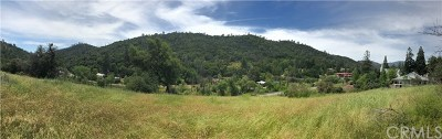 Mariposa Residential Lots & Land For Sale: Highway 49
