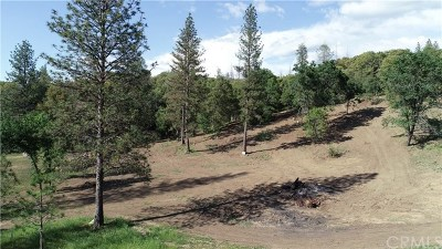 Mariposa Residential Lots & Land For Sale: 5340 Montana Del Oro