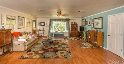 Mariposa Single Family Home For Sale: 3940 Snow Creek Road