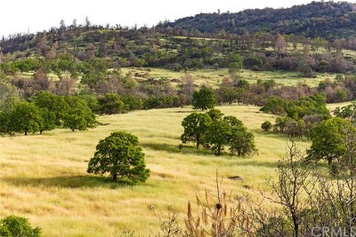 Bear Valley Residential Lots & Land For Sale: Wild Turkey Lane