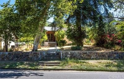 Mariposa Single Family Home For Sale: 5058 Bullion Street