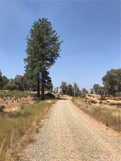 Mariposa Residential Lots & Land For Sale: 5884 Vineyard Lane