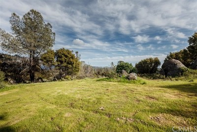 Mariposa Residential Lots & Land For Sale: Hillside