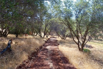 Mariposa Residential Lots & Land For Sale: 5015 Mykleoaks Road