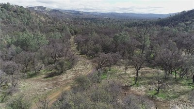 Mariposa County Residential Lots & Land For Sale: 161 Guadalupe Creek Road