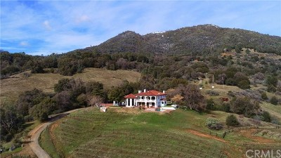 Mariposa County Single Family Home For Sale: 4063 Triangle Rd.