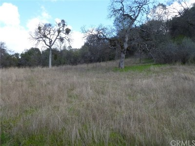 Mariposa Residential Lots & Land For Sale: Hidden Valley Road