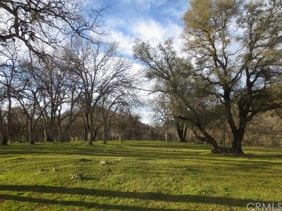 Mariposa Residential Lots & Land For Sale: 5544 Lakeside Road