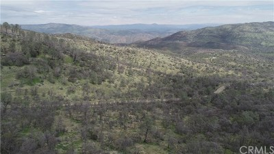 Mariposa County Residential Lots & Land For Sale: 56 Bear Valley Road