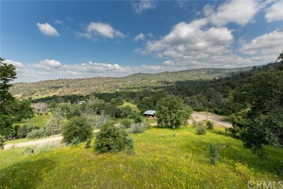 Mariposa County Single Family Home For Sale: 4132 Usona Road