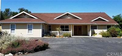 Mariposa Single Family Home For Sale: 3198 Hidden Valley Road