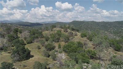 Mariposa County Residential Lots & Land For Sale: 35 Hidden Valley