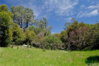 Mariposa Residential Lots & Land For Sale: 4281 Ashworth Road
