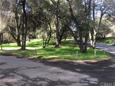 Clearlake Residential Lots & Land For Sale: 14385 Burns Valley Road