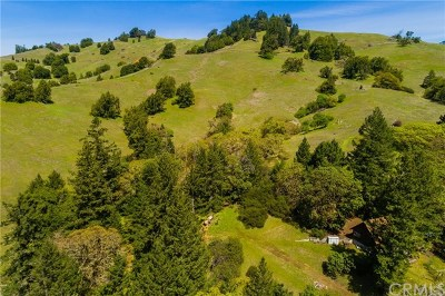 Ukiah Single Family Home For Sale: 10101 Orr Springs Road