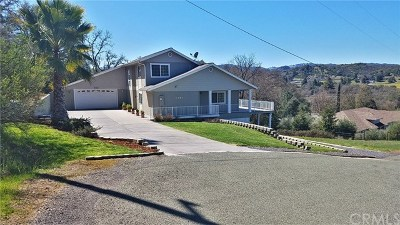 Ukiah Single Family Home For Sale: 1081 Cortina Place