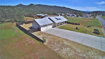 Clearlake Single Family Home Active Under Contract: 2584 Spring Valley Road