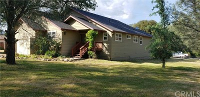 Clearlake Single Family Home For Sale: 2776 Spring Valley Road
