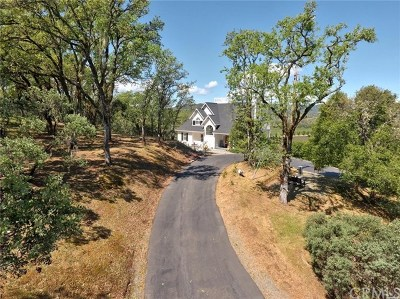Hopland Single Family Home For Sale: 1241 University Road