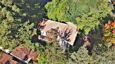 Upper Lake Single Family Home For Sale: 5109 Faye Road