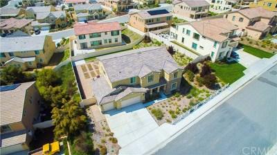 Murrieta Single Family Home For Sale: 37825 Mockingbird Avenue
