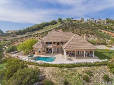 Murrieta, Temecula Single Family Home For Sale: 21203 Paseo Montana