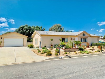 Wildomar Single Family Home For Sale: 34128 Olive Grove Road