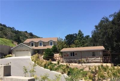 Trabuco Canyon Single Family Home For Sale: 19601 Live Oak Canyon Road
