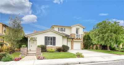 San Juan Capistrano Single Family Home For Sale: 26601 Paseo Callado