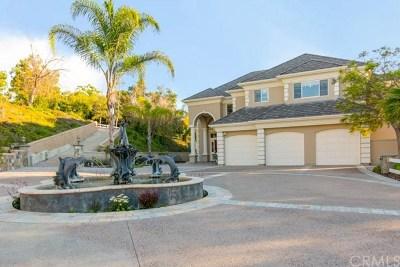 Coto de Caza Single Family Home For Sale: 12 Oak Canyon Trail